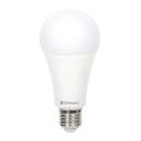 LED Globe - Classic A